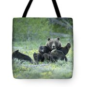 Grizzly Romp - Grand Teton Tote Bag