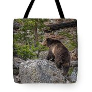 Grizzly Sow In Yellowstone Park Tote Bag