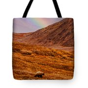 Grizzly Under The Rainbow Tote Bag