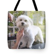 Grooming The Neck Of Adorable White Dog Tote Bag