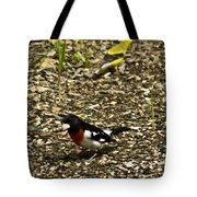 Grosbeak With Quizzical Look Tote Bag