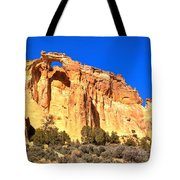 Grosvenor Double Arch Panorama Tote Bag
