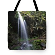 Grotto Falls In The Great Smokies Tote Bag