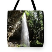 Grotto Falls Perspective Tote Bag