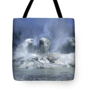 Grotto Geyser - Yellowstone National Park Tote Bag