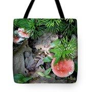 Ground Pine And Fungi Tote Bag