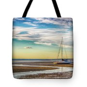 Grounded On The Beach Tote Bag