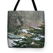 Grounded Tote Bag by Stephanie Calhoun