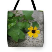 Grounded Sunflower Tote Bag
