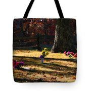 Groundhog Hill Cemetery Tote Bag