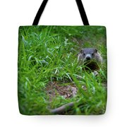 Groundhog Home Defense 2017 28 Tote Bag