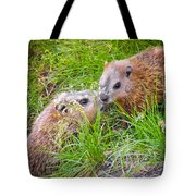 Groundhog Mother Love Tote Bag