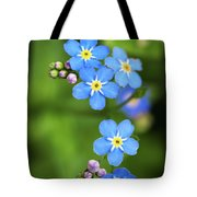 Group Of Blue Flowers Forget-me-not Tote Bag