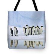 Group Of Emperor Penguins Tote Bag