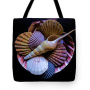 Group Of Shells #1 Tote Bag