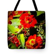 Group Of Small Red Zinnia's Tote Bag