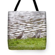 Group Shot Tote Bag