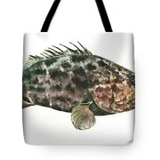 Grouper Fish Tote Bag