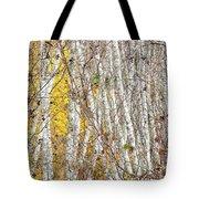 Grove 2 Tote Bag
