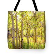 Grove Of Aspens On An Autumn Day Tote Bag