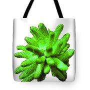 Growing Green Tote Bag