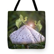 Growing Mushrooms Tote Bag
