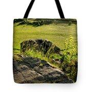 Growing On Rocks. Tote Bag