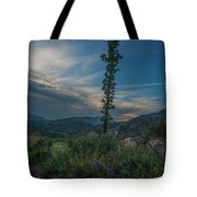 Growth Spurt To The Heavens Tote Bag