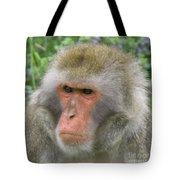 Grumpy Monkey Tote Bag
