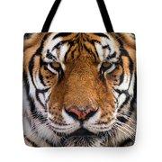 Hunter's Displeasure Tote Bag