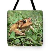 Grumpy Toad Tote Bag