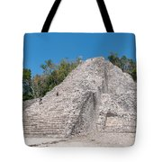 Grupo Nohoch Mul At The Coba Ruins  Tote Bag