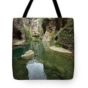 Guadalevin River At El Tajo Gorge From The Bottom Of The Secret  Tote Bag