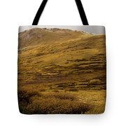 Guanella Pass Autumn Day I Tote Bag