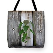 Guarded By The Ancients Tote Bag