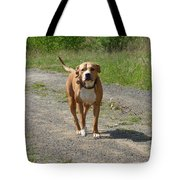 Guarding Pit Bull Dog Tote Bag