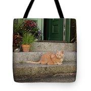 Guarding The Door Tote Bag