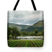 Guatemalan Nursery And Lake Tote Bag