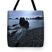Gueirua In Blue Tote Bag