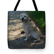 Guide Dog Tote Bag