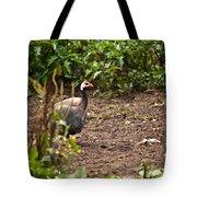 Guinea Fowl 1 Tote Bag