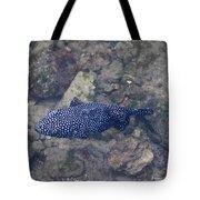 Guineafowl Pufferfish Tote Bag
