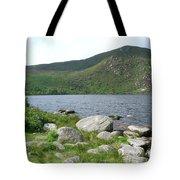 Guinness Lake Tote Bag