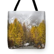 Guisane Valley In Autumn - French Alps Tote Bag