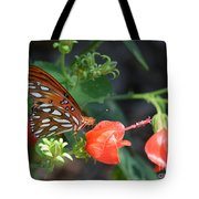 Gulf Fritillary Butterfly On Beautiful Flowers  Tote Bag