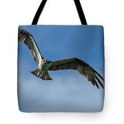 Gulf Osprey Tote Bag