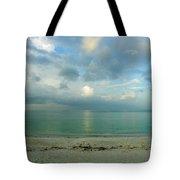 Gulf Storm Tote Bag