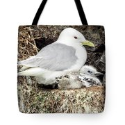 Gull Adult And Chick On Cliff Tote Bag