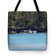 Gull Attack Tote Bag