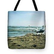 Gull Beach Tote Bag